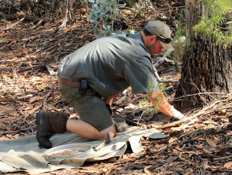 Wild Dog Controller Anthony Websdale ground baiting in East Gippsland